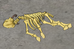Goat-skeleton.png