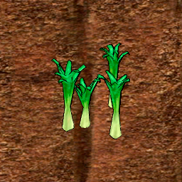 Leek Crop Stage 4.png