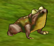 Toadingame.png