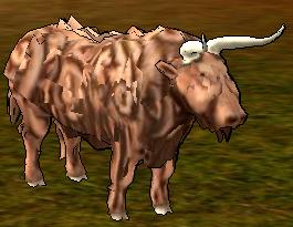 aurochs ring of brodgar