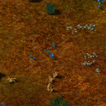 Timber Land Terrain.png