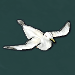 Seagull-ingame.png