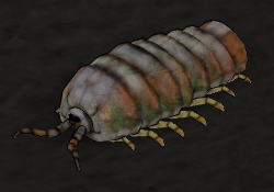 Cave Louse.png