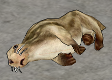 Grey Seal-dead.png