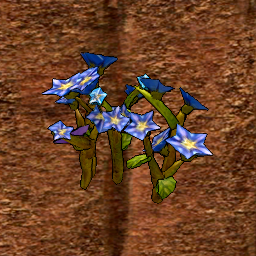 Flax Crop Stage 4.png