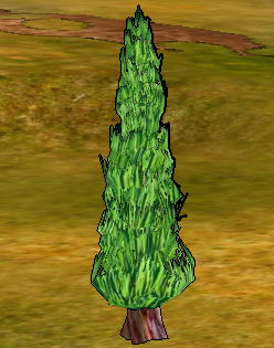 Cypress Tree.png