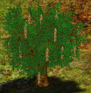 Goldenchain Tree.png