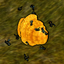 Wild Beehive.png