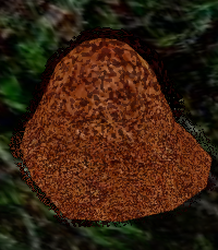 Ant Hill.png