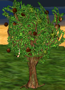 Chestnut Tree.png