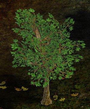 Lote Tree.png