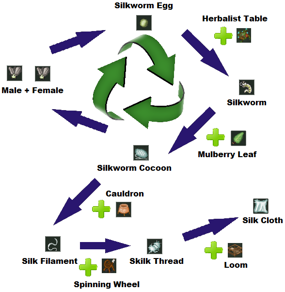 Sericulture cycle.png